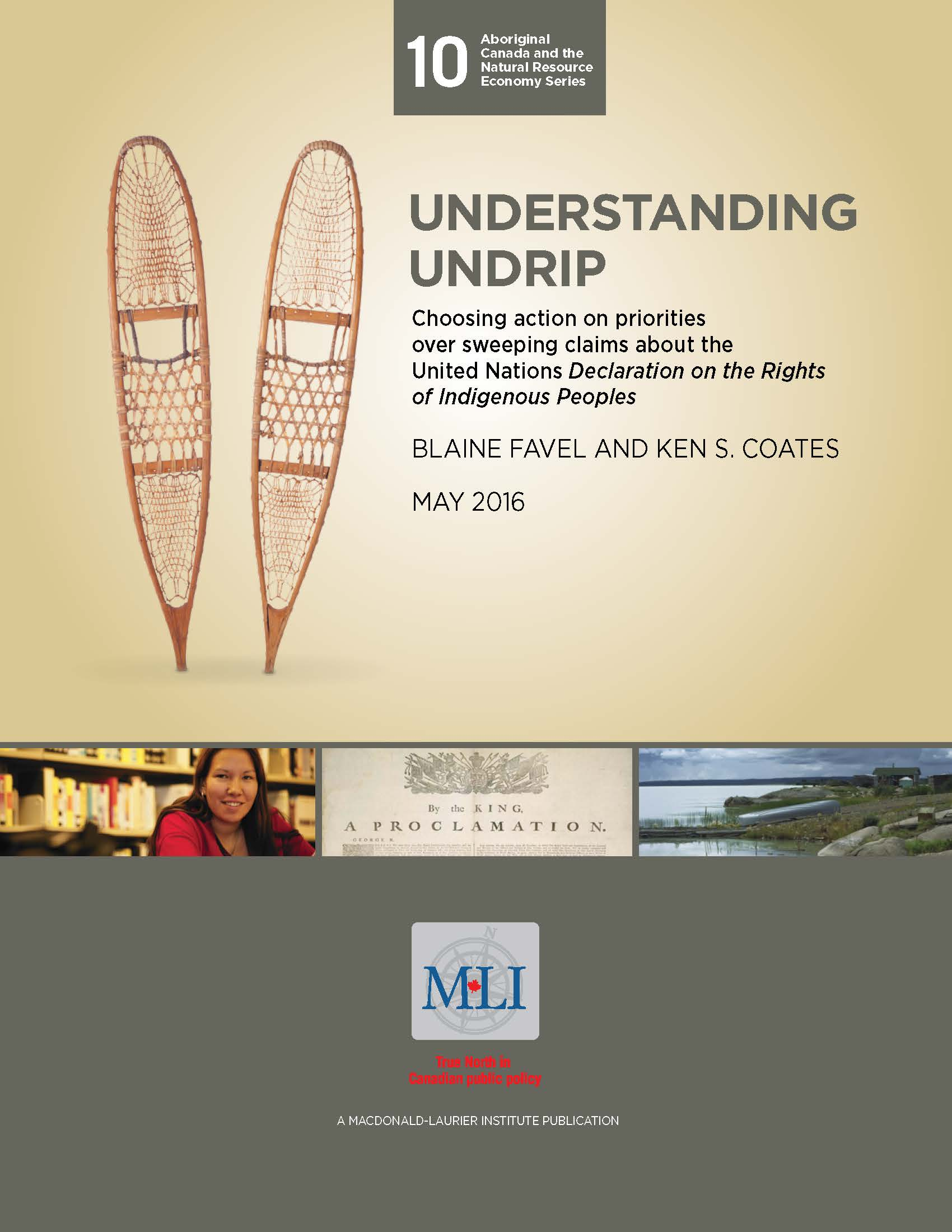 Understanding Undrip: Choosing action on priorities over sweeping claims about the United Nations Declaration on the Rights of Indigenous Peoples